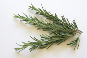 Rosemary: The Herb Of Remembrance