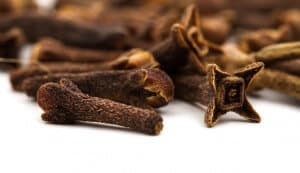 Cloves: One of the World's Most Powerful Flavors