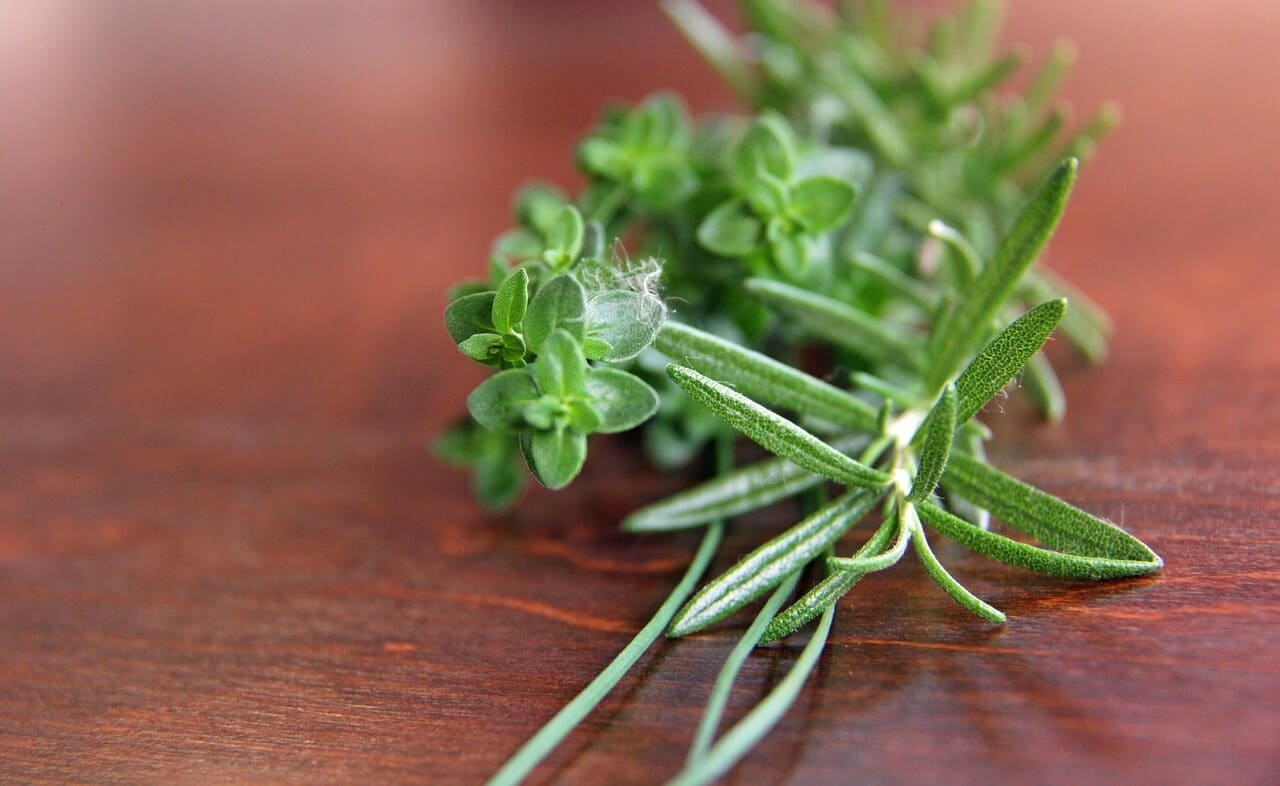 What's A Good Rosemary Substitute?