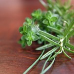 Rosemary vs Thyme