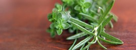 Rosemary Vs. Thyme: SPICEography Showdown