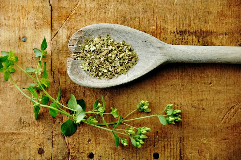 Fresh Oregano Vs Dried