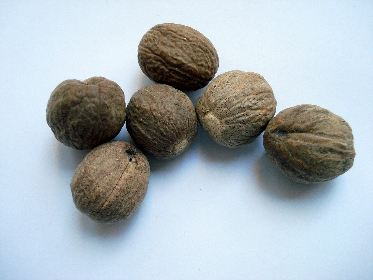 Nutmeg: The Aromatic Holiday Favorite