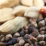 Cardamom pods vs seeds