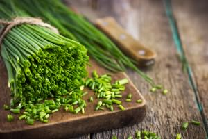 Chives: An Ancient Herb With A Delicate Flavor