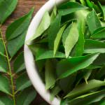 Curry Leaf Substitute