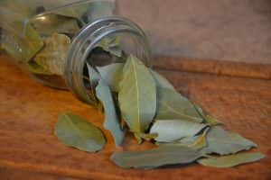 Curry Leaves Vs. Bay Leaves: SPICEography Showdown