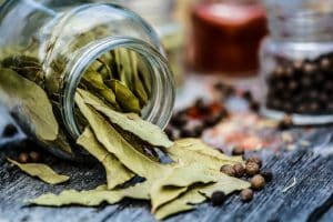 curry leaves vs bay leaves