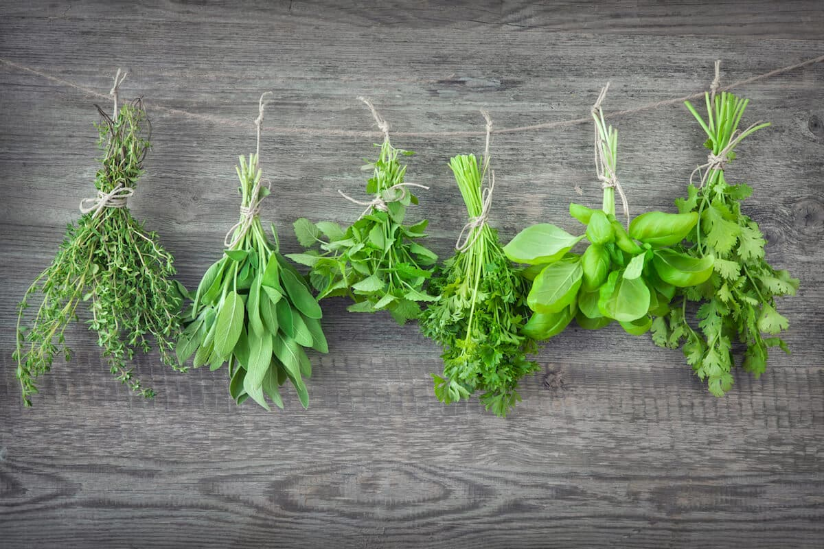 What's a Good Summer Savory Substitute?