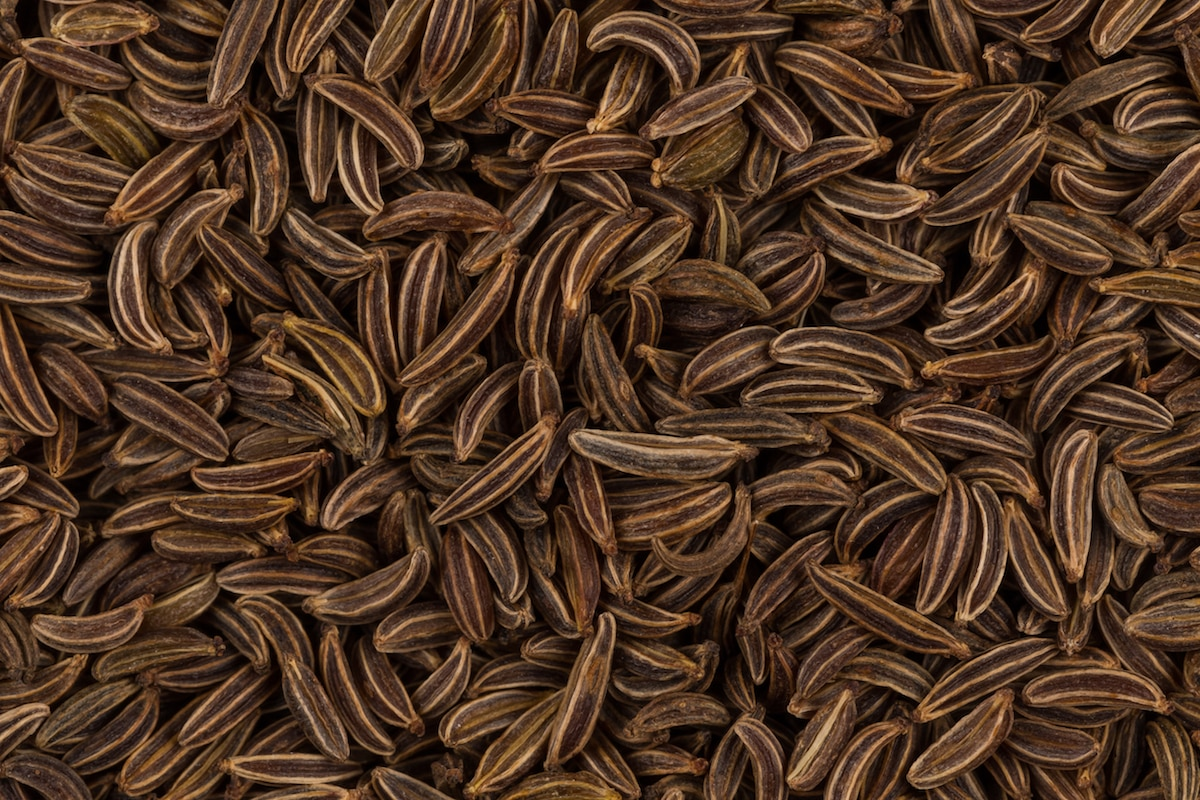 Caraway Seeds: An Old World Favorite
