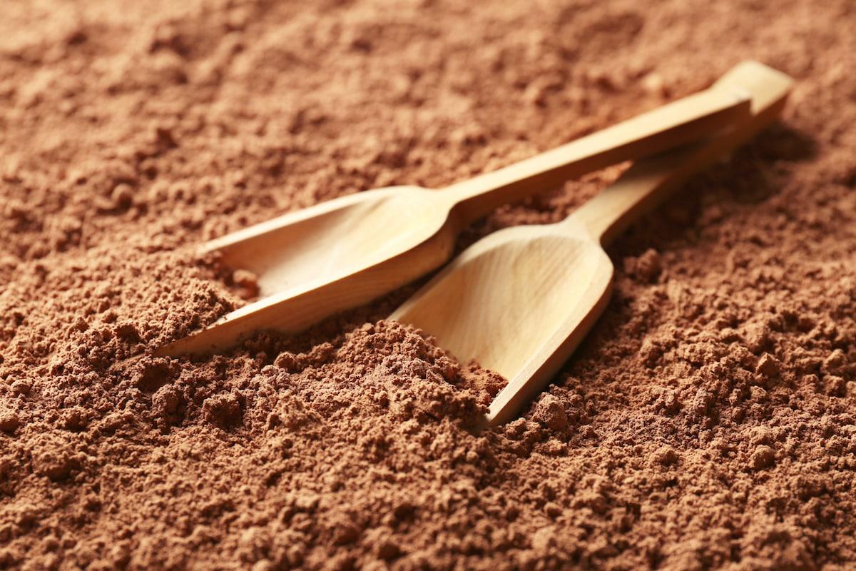 cacao powder