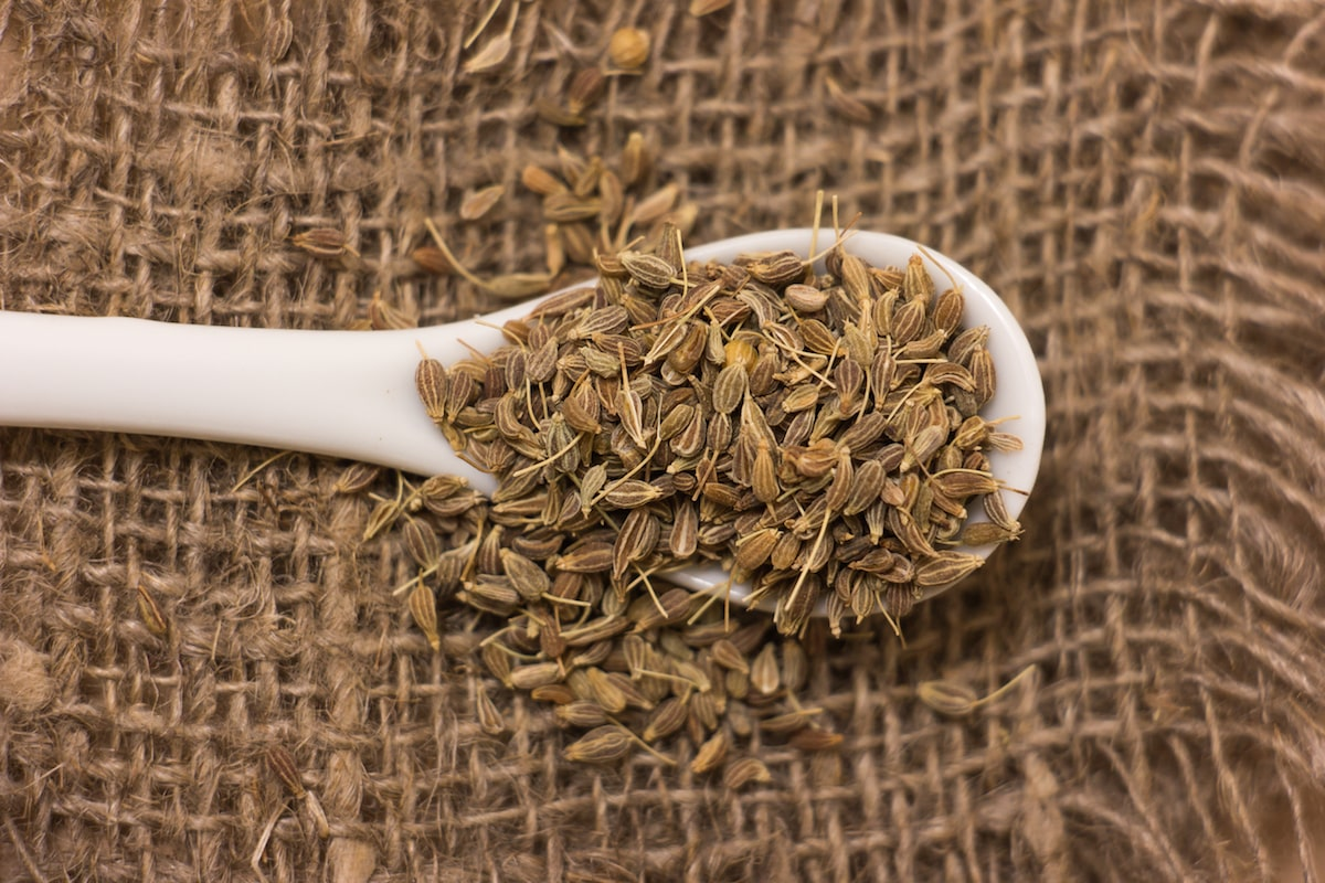 anise seed substitute