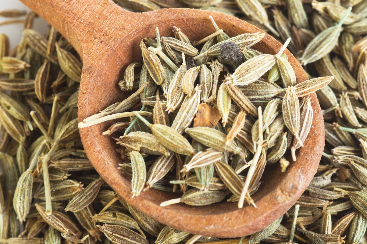 Fennel Seed Vs. Anise Seed: SPICEography Showdown