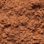 carob vs cacao