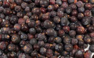 What's A Good Juniper Berries Substitute?
