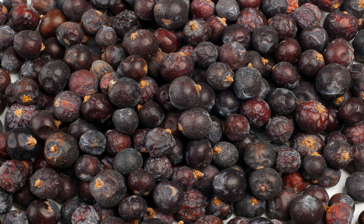 What S A Good Juniper Berries Subsute