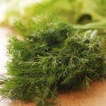 too much dill