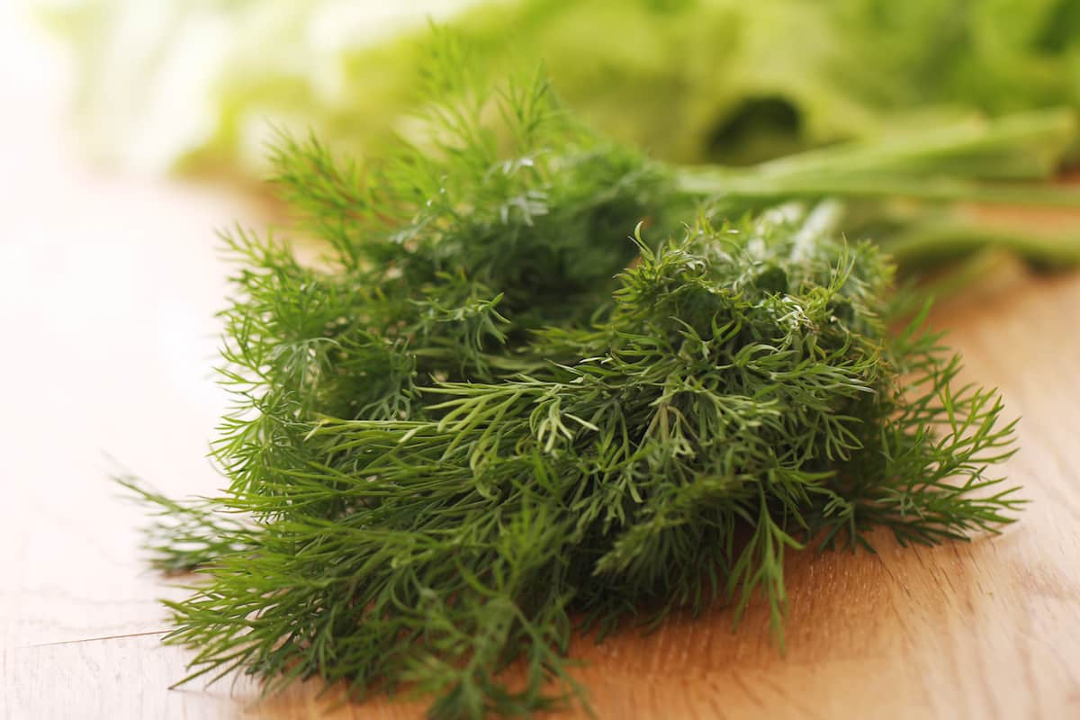 Too Much Dill? Here's How To Fix It