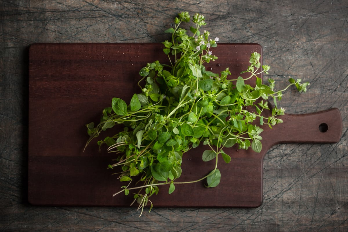 Added Too Much Oregano? Counteract It With These Tips