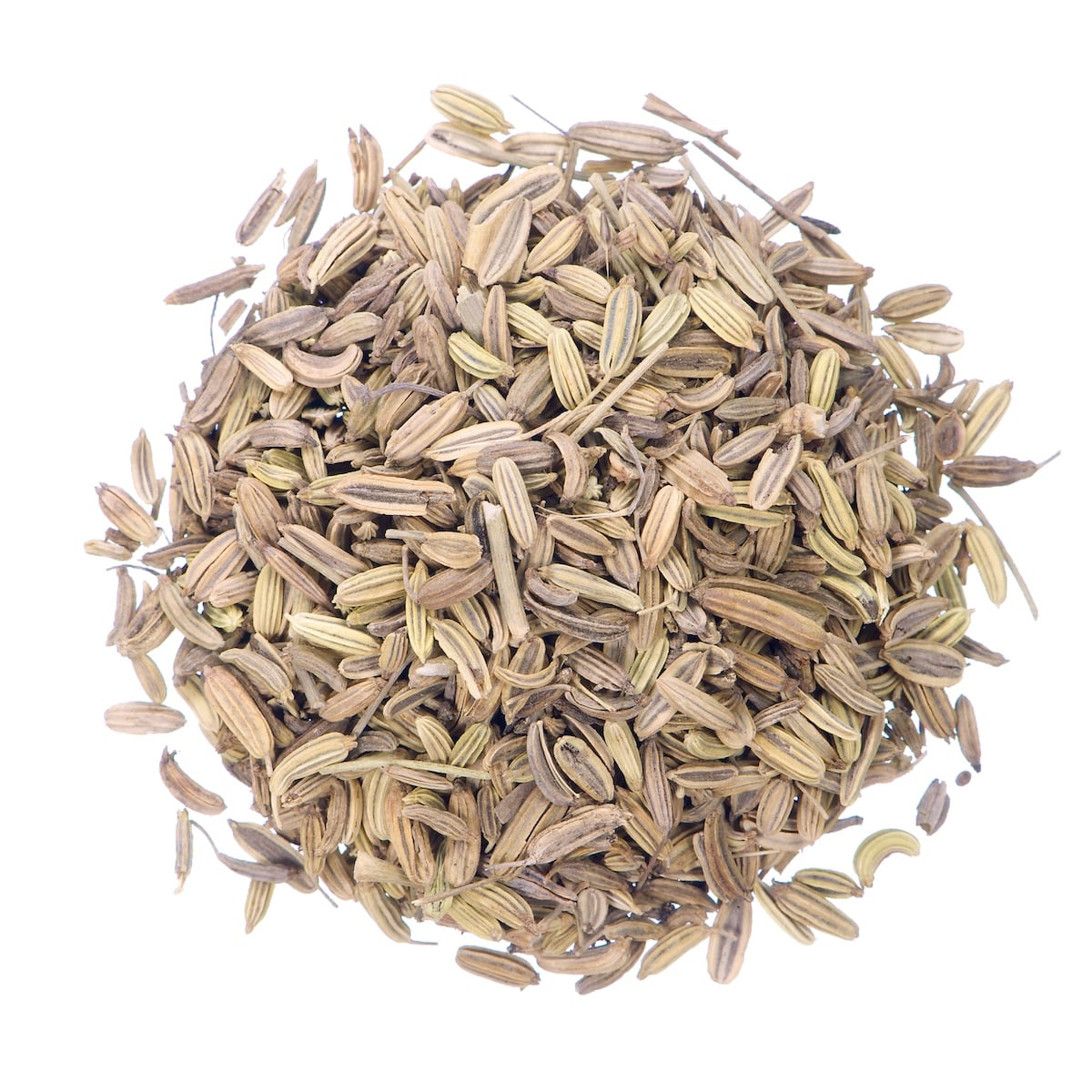 Caraway Seeds Vs. Fennel Seeds: SPICEography Showdown