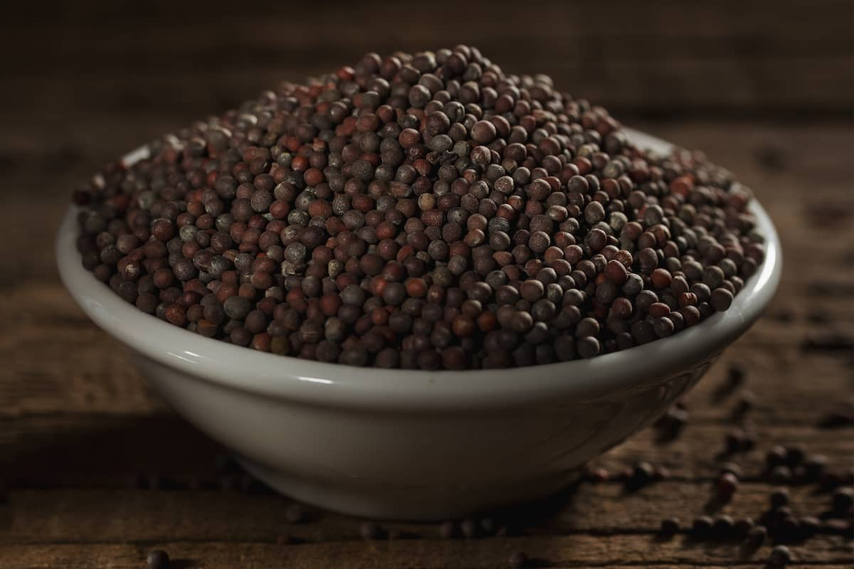 Black Mustard Seeds: The Most Pungent Mustard Seed