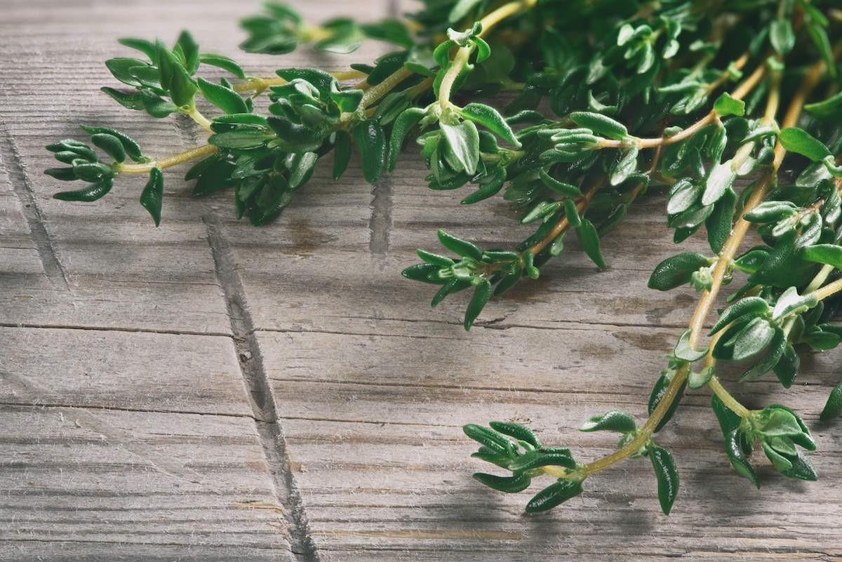 cooking with thyme