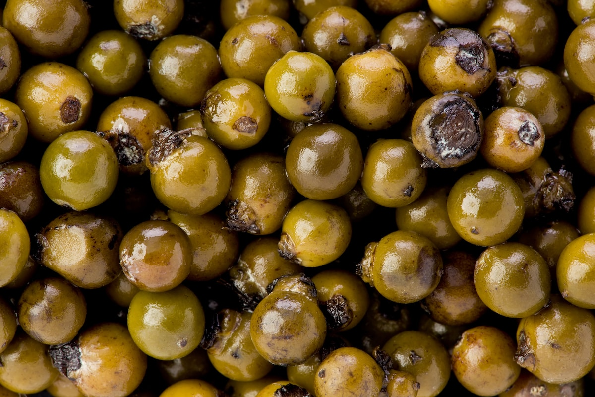 Green Peppercorns: A Milder Pepper