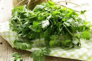 Cooking With Cilantro: The Do's And Don'ts