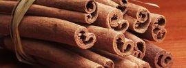 Saigon Cinnamon Vs. Ceylon Cinnamon: SPICEography Showdown