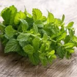Cooking with Mint