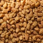 Fenugreek vs. Fennel Seed