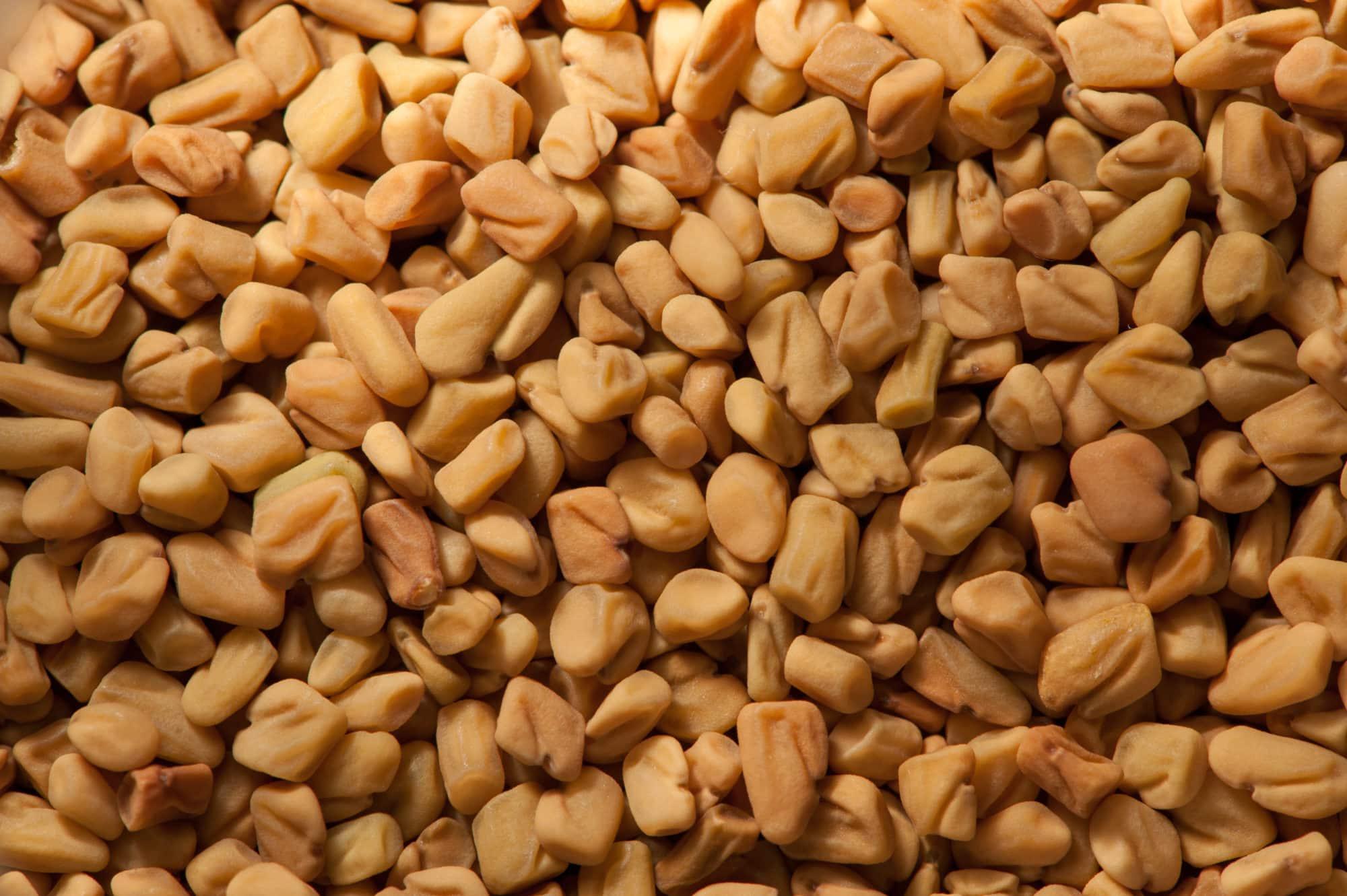Fenugreek vs. Fennel Seed
