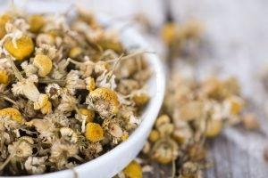 Chamomile: A Tea Herb For Sleep