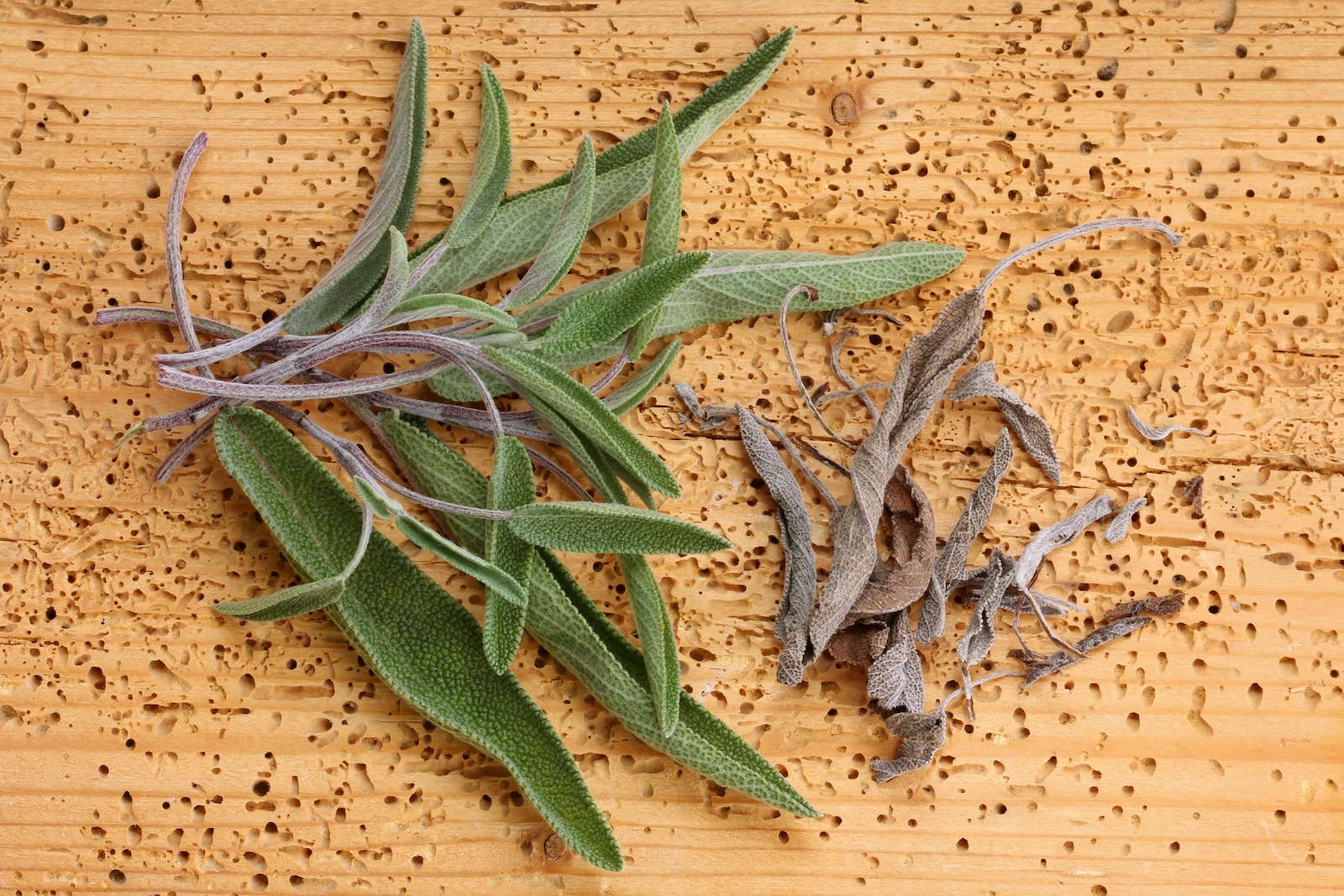 Fresh Sage Vs. Dried Sage