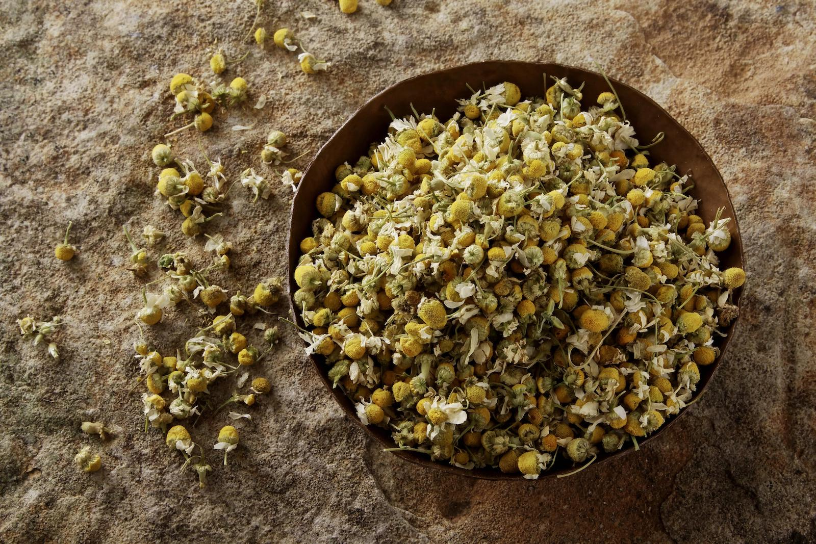 German Vs. Roman Chamomile: SPICEography Showdown