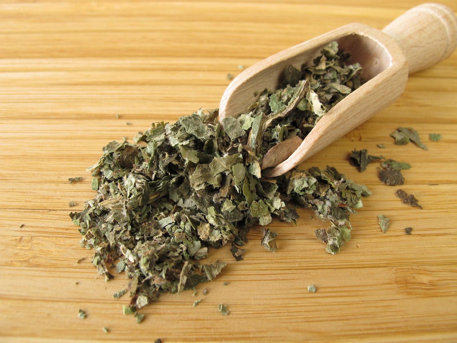 Butterbur: The Migraine Herb