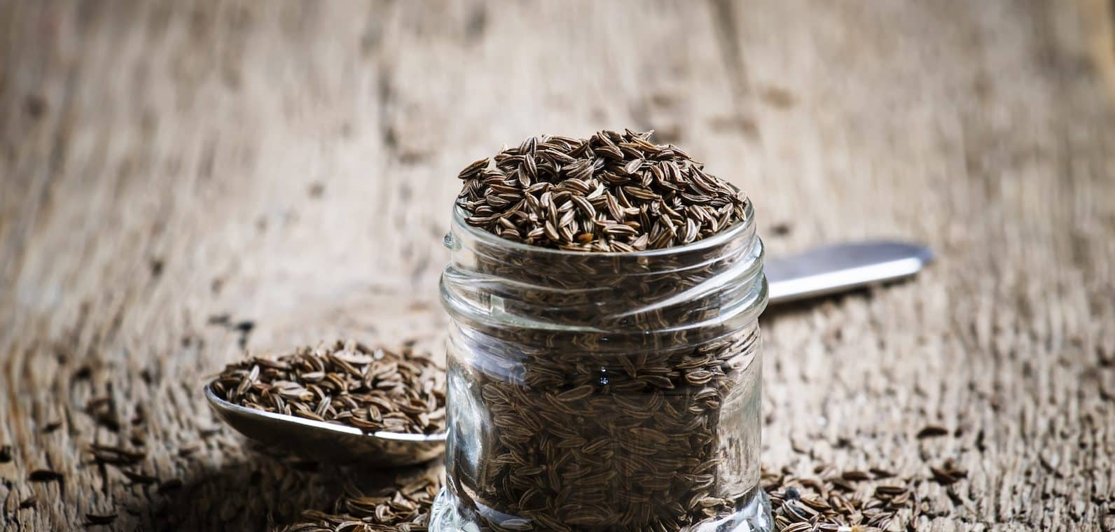 Caraway Vs. Cumin: SPICEography Showdown