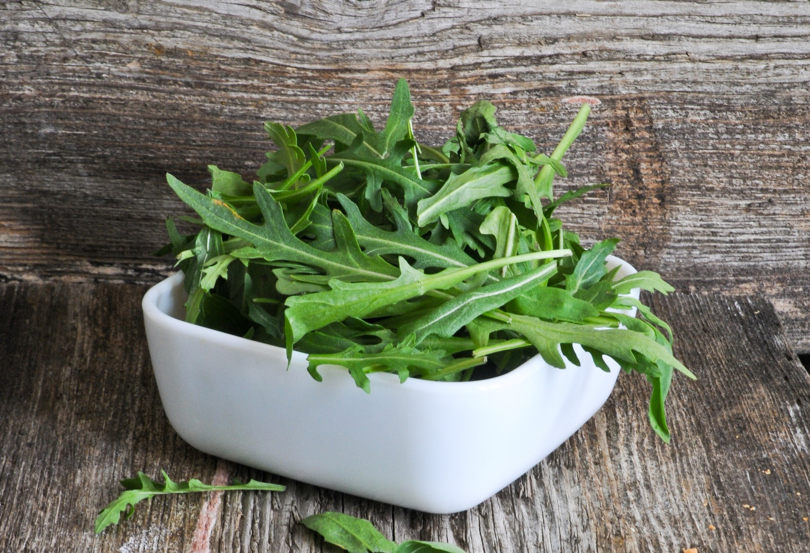 Arugula Vs. Spinach: SPICEography Showdown