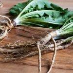 Dandelion root vs milk thistle