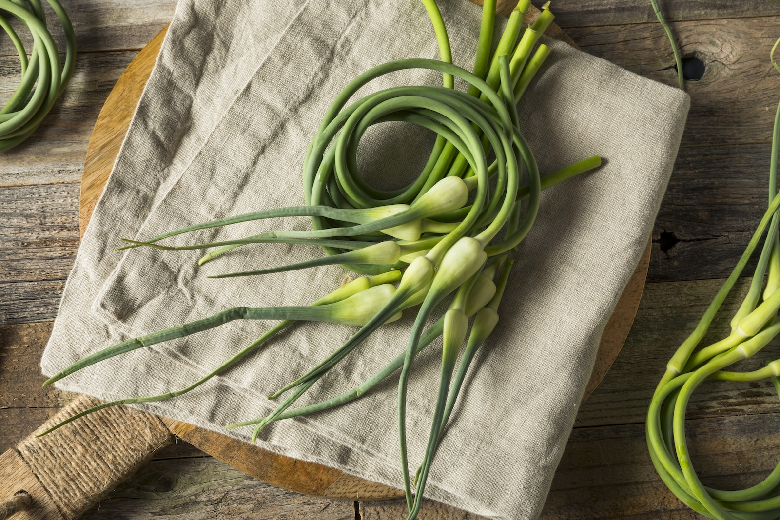 Storing garlic scapes