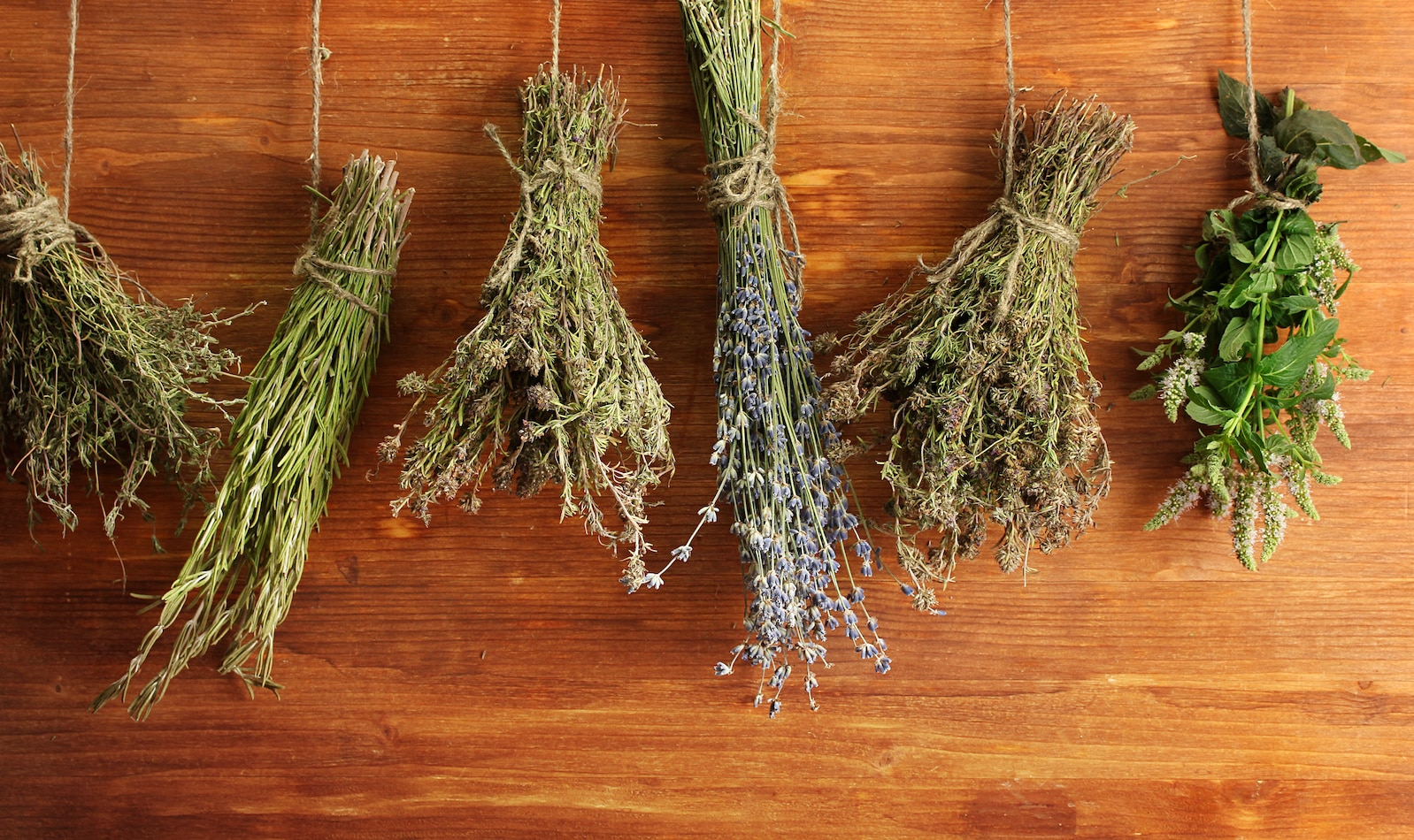 How to rehydrate herbs
