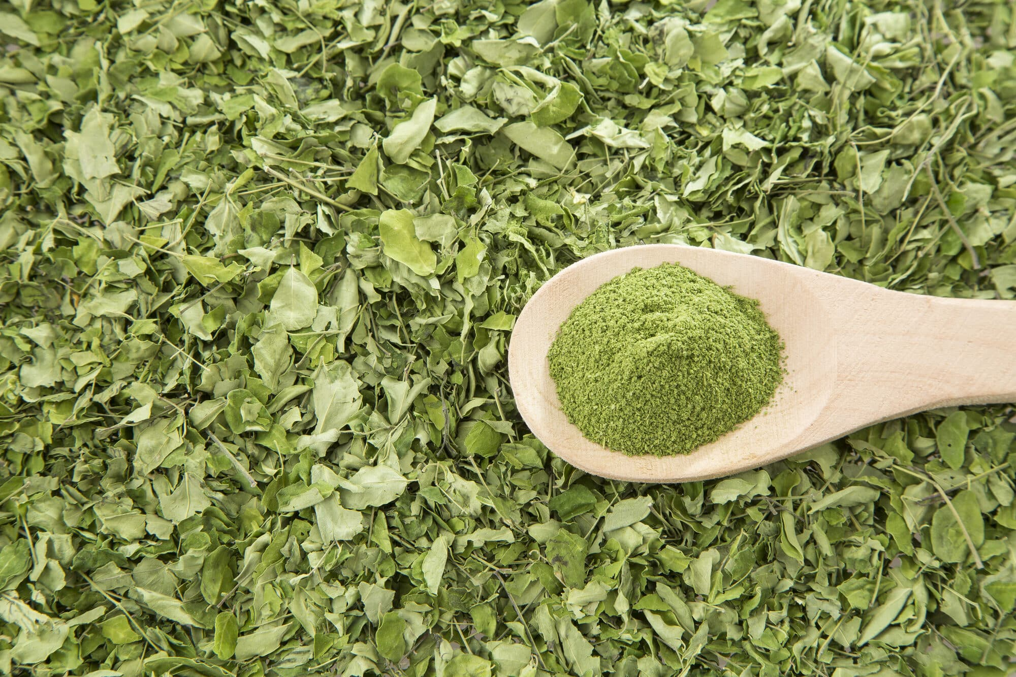 Cooking With Moringa: The Dos And Don'ts