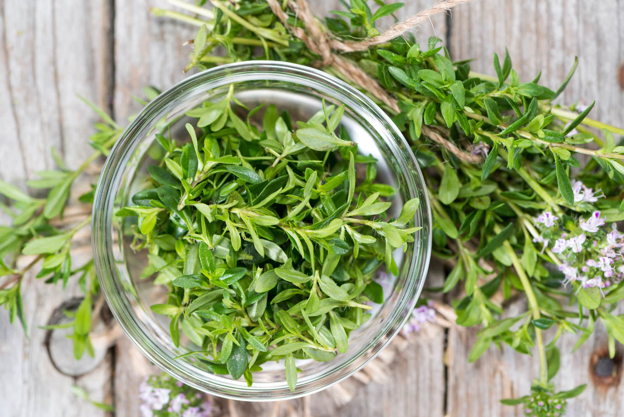 What's A Good Winter Savory Substitute?