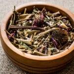 Echinacea Root Vs. Leaf