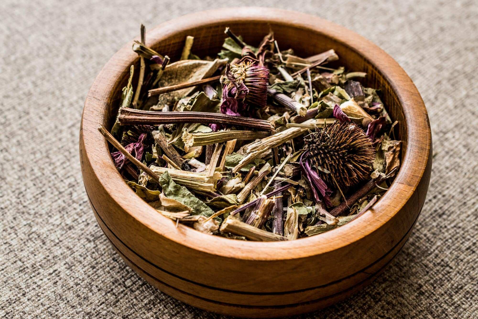Echinacea Root Vs. Leaf: SPICEography Showdown