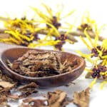 witch hazel substitute
