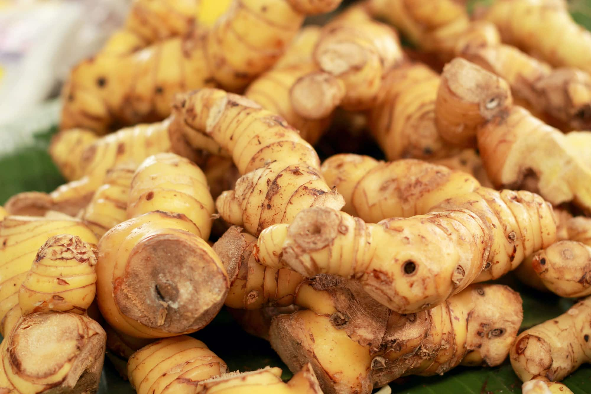 Galangal vs Ginger
