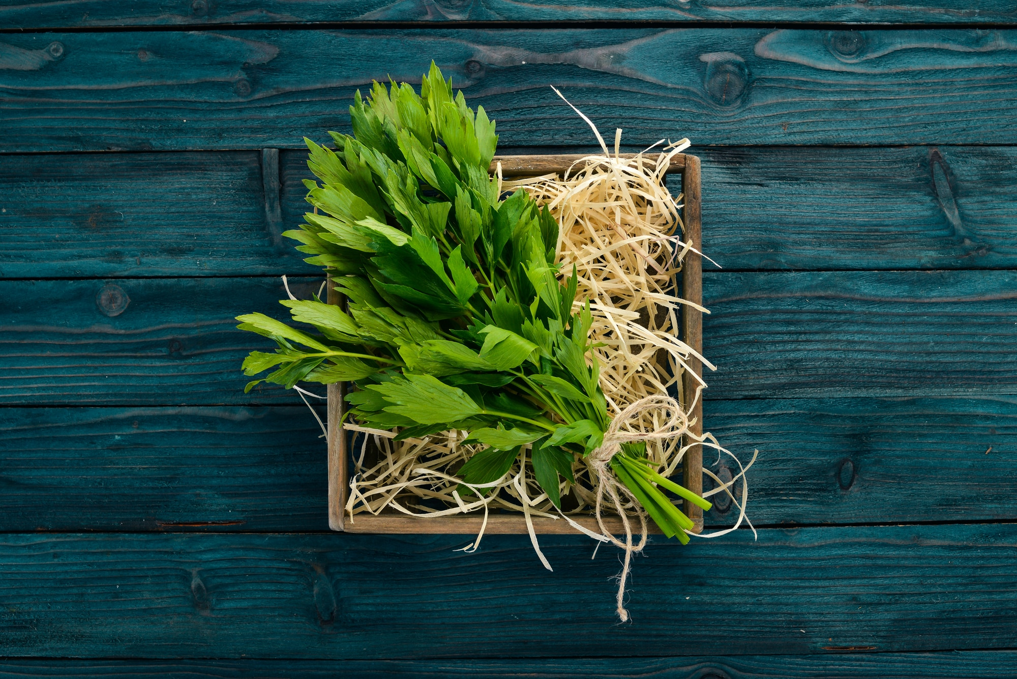 Celery Leaves Uses