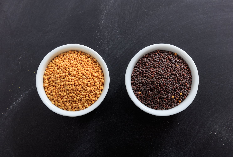 Yellow Mustard Seeds Vs. Black Mustard Seeds