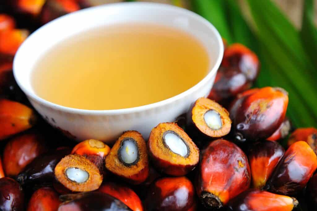 Palm Oil Vs. Palm Kernel Oil